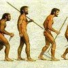 evolucion dela postura